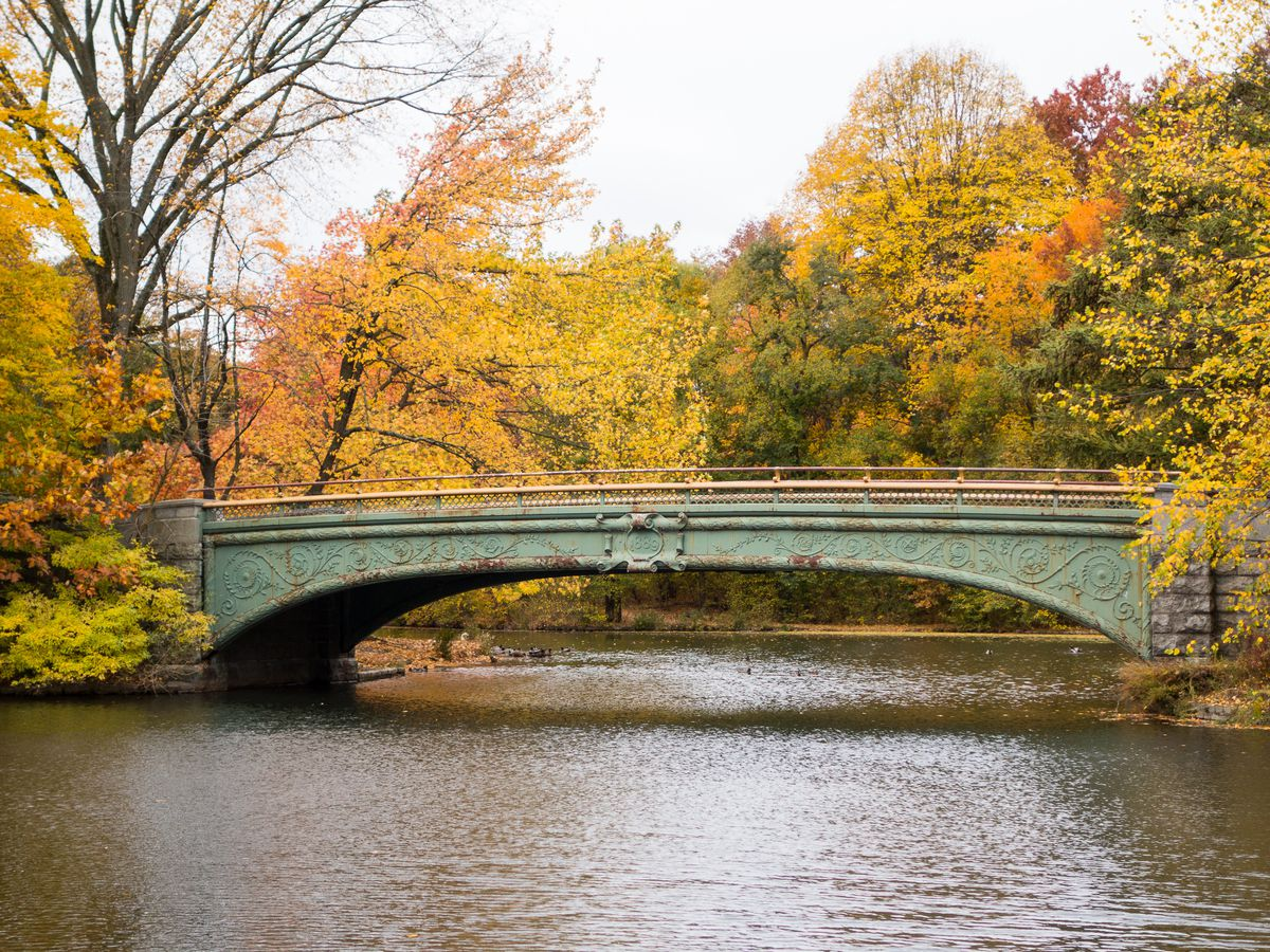 Prospect Park in the autumn. There is a bridge over a waterway. Trees with leaves in shades of yellow and orange are visible behind the bridge.