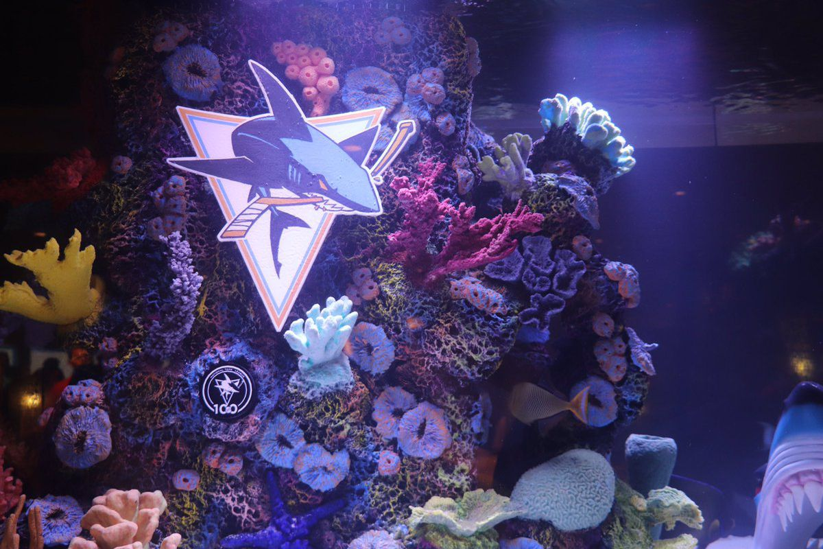 Close-up of Sharks' insignia in the new shark tank.