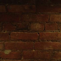 Exposed brick wall #1
