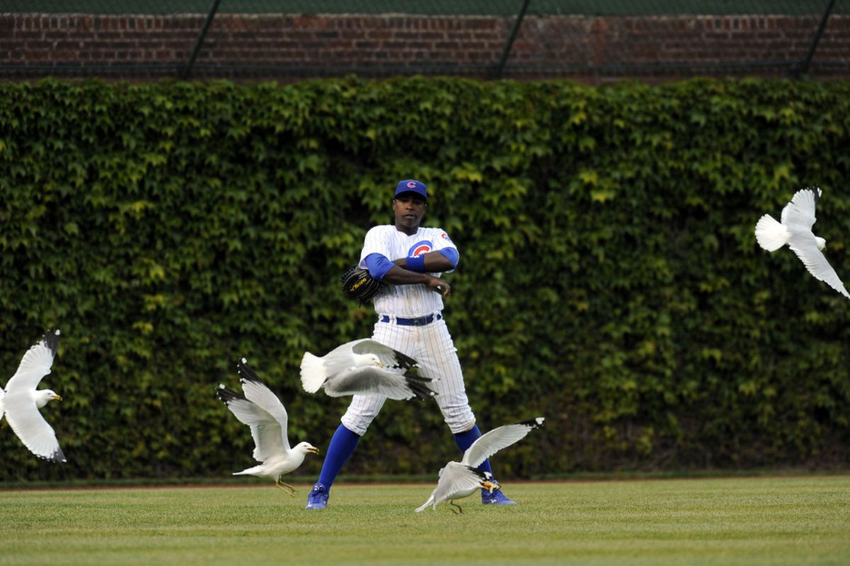 Alfonso Soriano's alter ego is The Hawkmaster. After games, he fights crime by commanding the birds to stop evil doers. Credit: David Banks-US PRESSWIRE