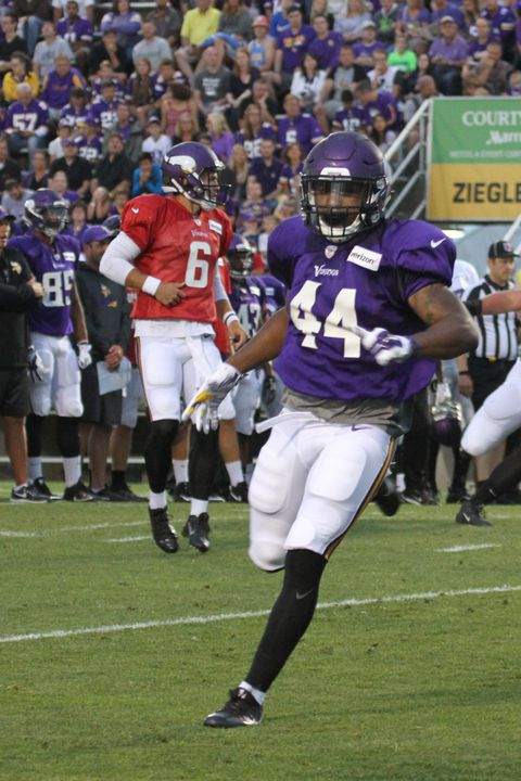 d923353c Vikings Camp Evaluations, Part I: Offense - Daily Norseman