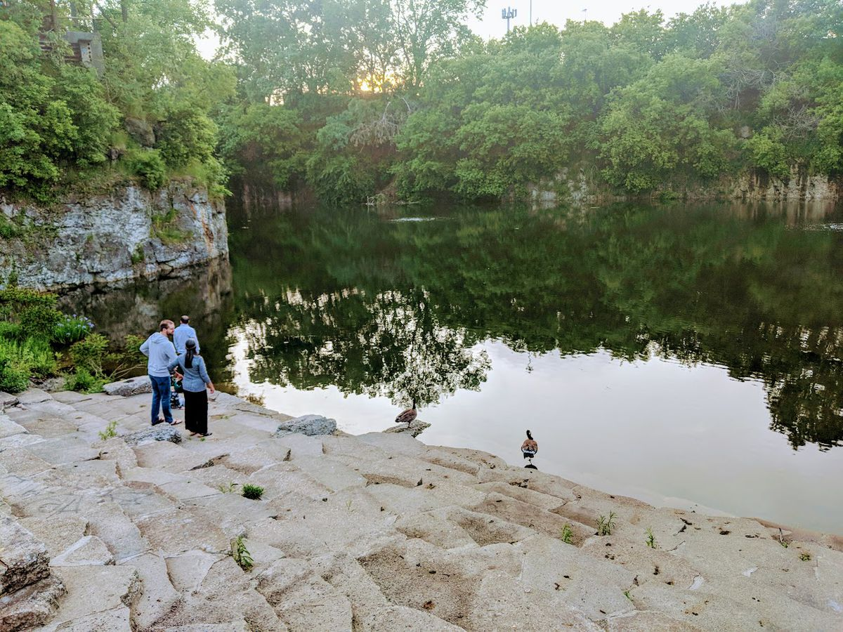 Visitors look out into the pond at Palmisano Park in Bridgeport.