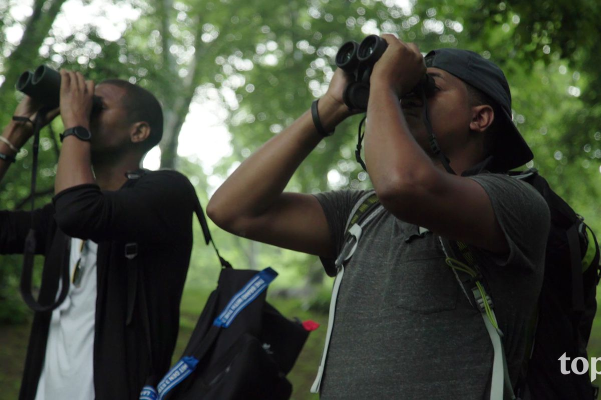 08213e97655 Birding gets new life in this YouTube nature series - The Verge