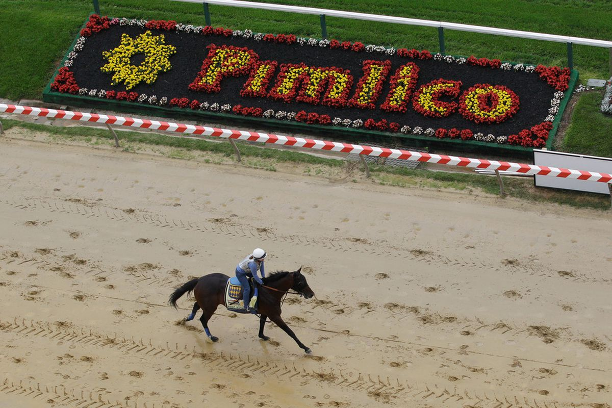 The Preakness is kind of lame.  (Photo by Rob Carr/Getty Images)