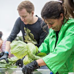 The cabbage shredding competition during Chomp & Stomp.