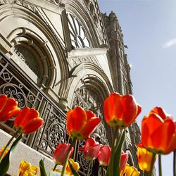 Hundreds attend Easter Mass at the Cathedral of the Madeleine Sunday, April 8, 2012 in Salt Lake City.