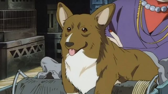 Ein, a dog with a human-like intelligence from Cowboy Bebop.