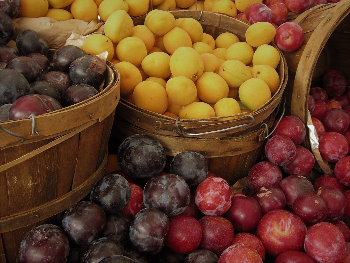 A basket of plums sits out for sale at a stand at the Studio City Farmers Market in Studio City, California.