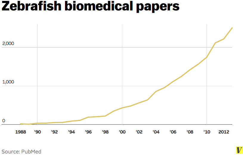 Zebrafish papers