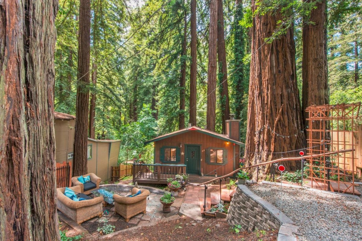 Tiny cabin amidst La Honda redwoods asks $475K - Curbed SF