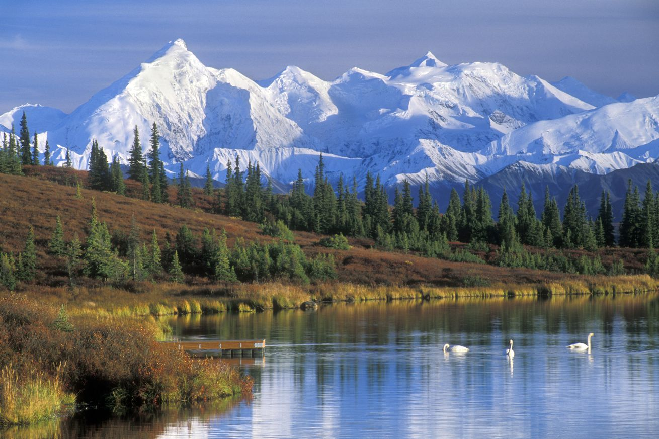 The Alaska Range with Mount McKinley and Wonder Lake with Tundra swans in the fall.