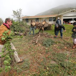 A group of people help Ronna Hunter after her large pine was felled by high winds in Farmington on Tuesday, Sept. 8, 2020.