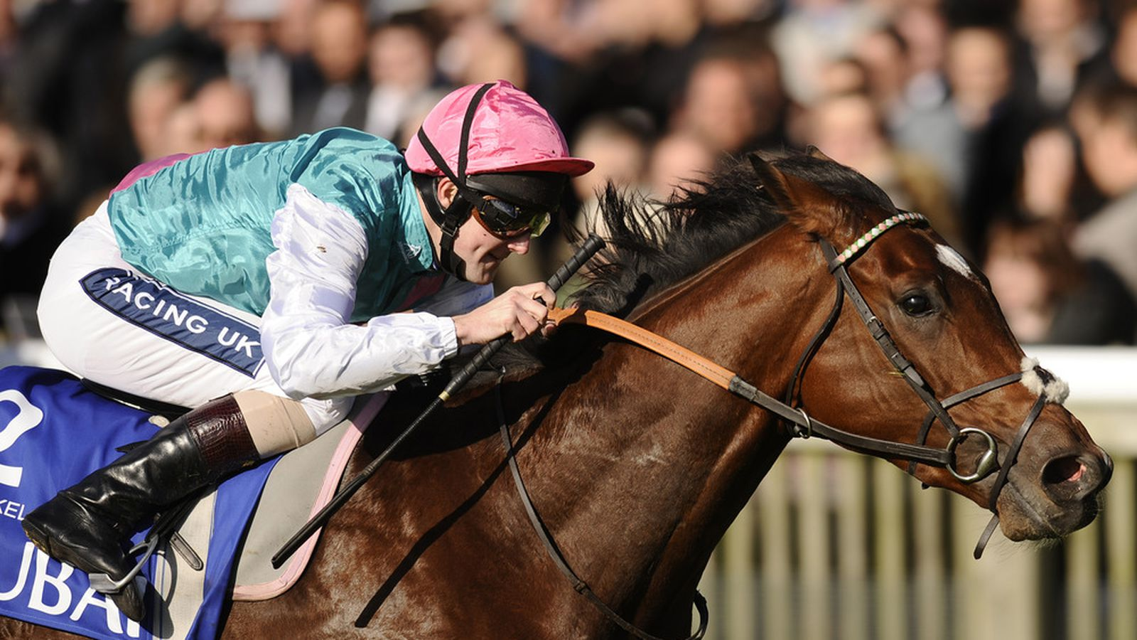 Kentucky Derby Vs 2 000 Guineas Which Race Will Feature
