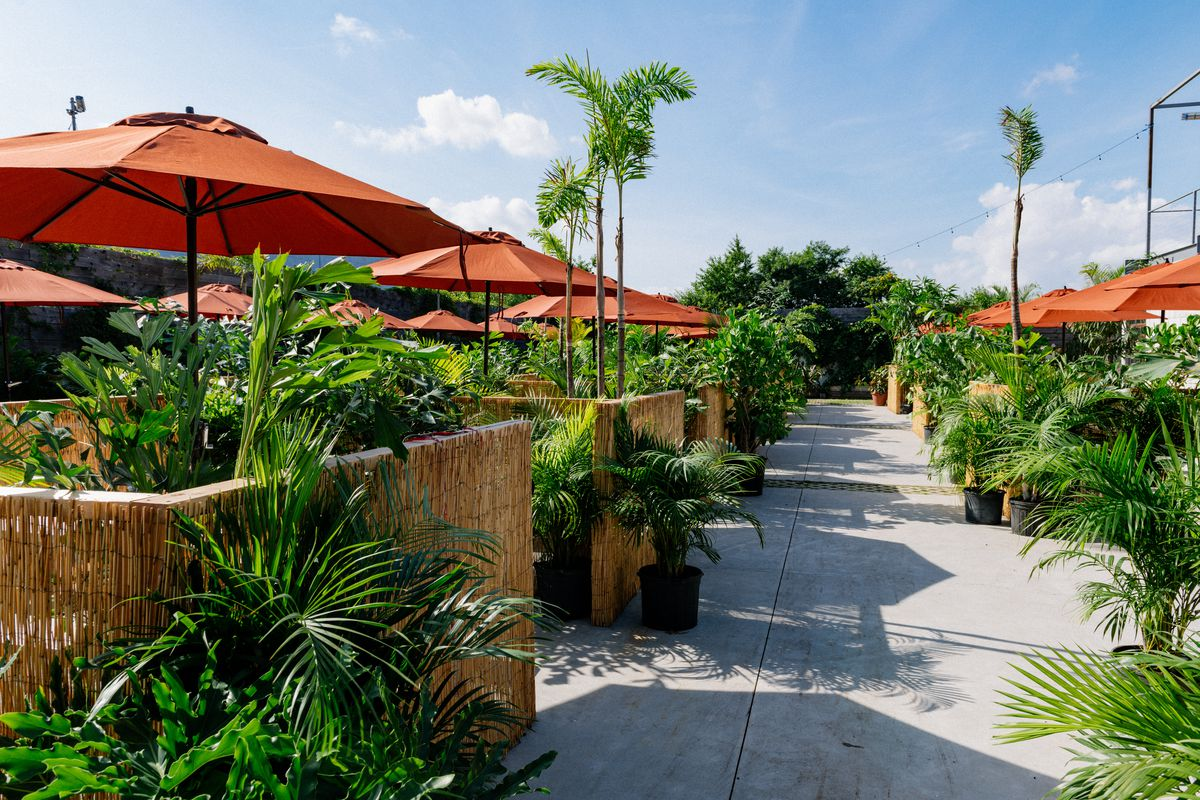 A courtyard outfitted with orange umbrellas, light wooden dividers, and lots of potted plants
