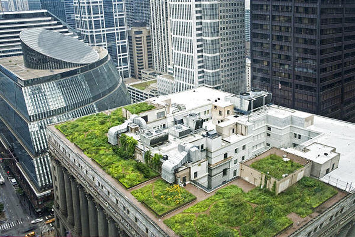 Gardener: Green roofs and rooftop gardens - Deseret News
