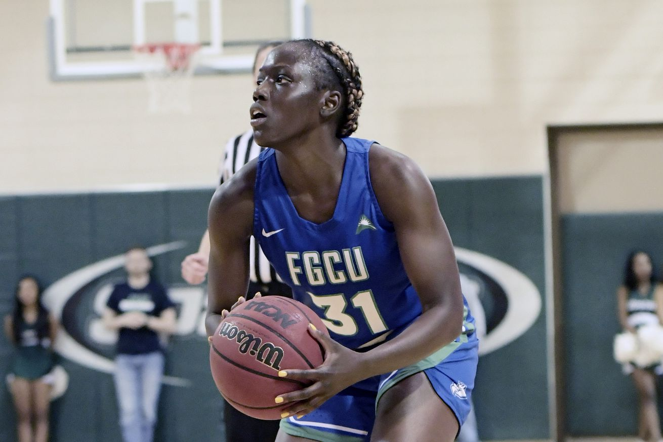 COLLEGE BASKETBALL: FEB 10 Women's - Florida Gulf Coast at USC Upstate