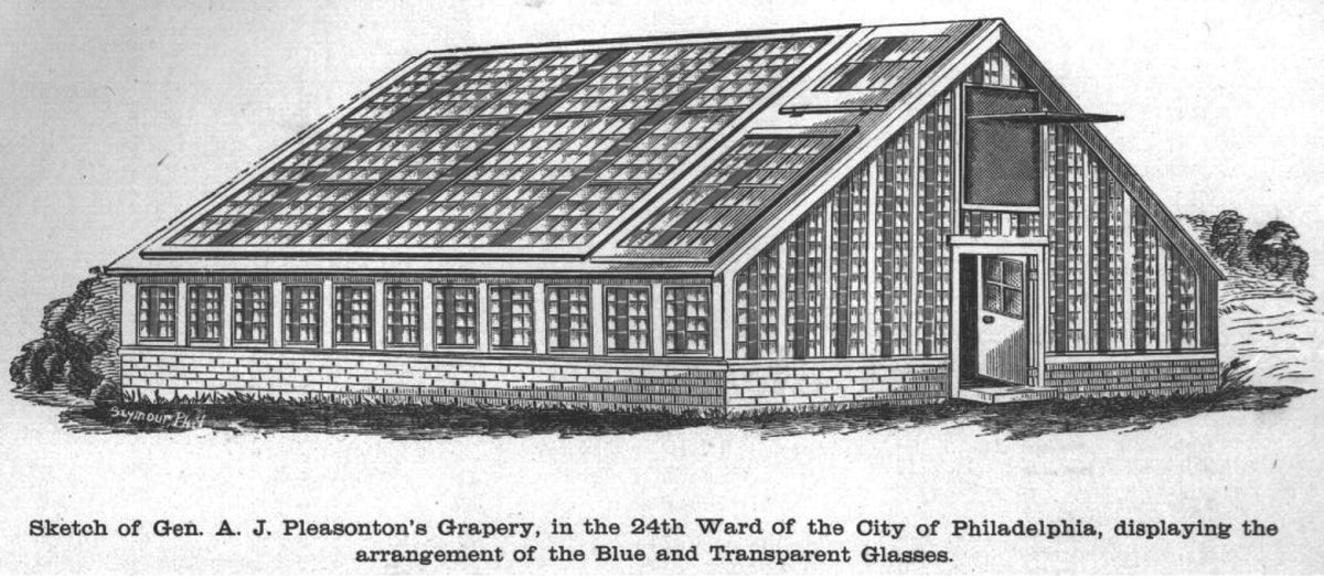"""General Pleasonton's grapery, the place where he """"proved"""" his concept."""