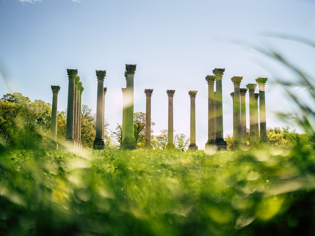 The old U.S. Capitol columns at the National Arboretum, seen from the grass.