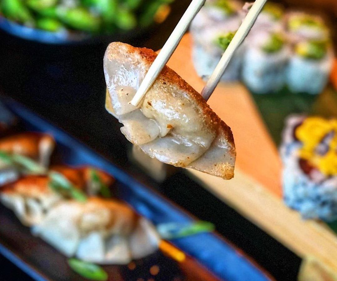Chopsticks hold a pan-seared, gyoza-style dumpling above a long, narrow plate that holds more of them.