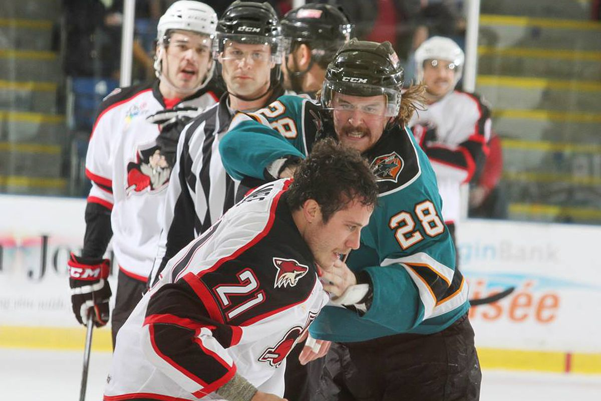 Worcester Sharks rookie forward Riley Brace scraps with Portland Pirates forward Andy Miele during the first period of the Sharks' 3-1 road win Friday night.