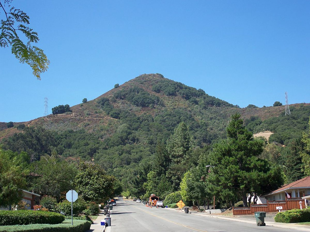 A sharply pointed hill covered with pine trees.