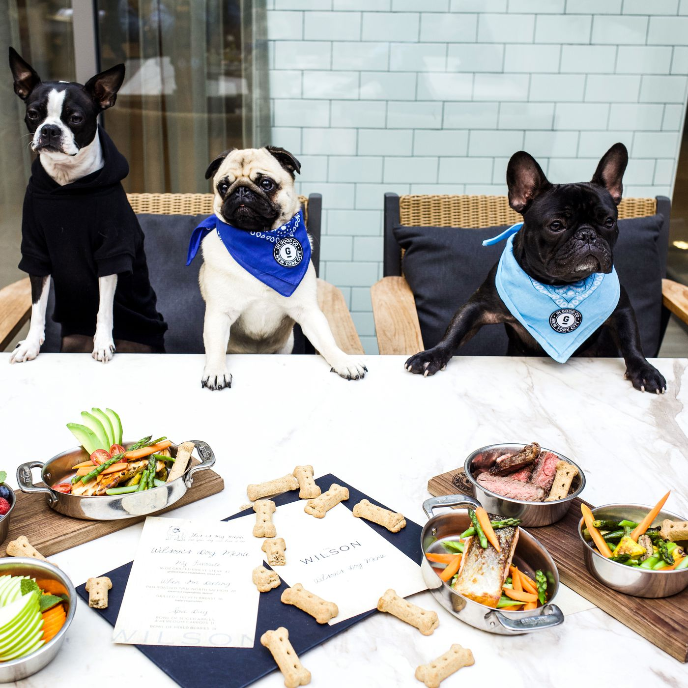16 Top Dog-Friendly Restaurants and Bars in NYC - Eater NY Watch Dogs Map Coffee Shops on fishing map, ice cream shop map, coffee facebook, bank map, parking map, church map, restaurant map, cafeteria map, playground map, hotel map, apartment complex map, beach map, gas station map, tavern map, pizza map, shopping map, garden map, casino map, supermarket map,