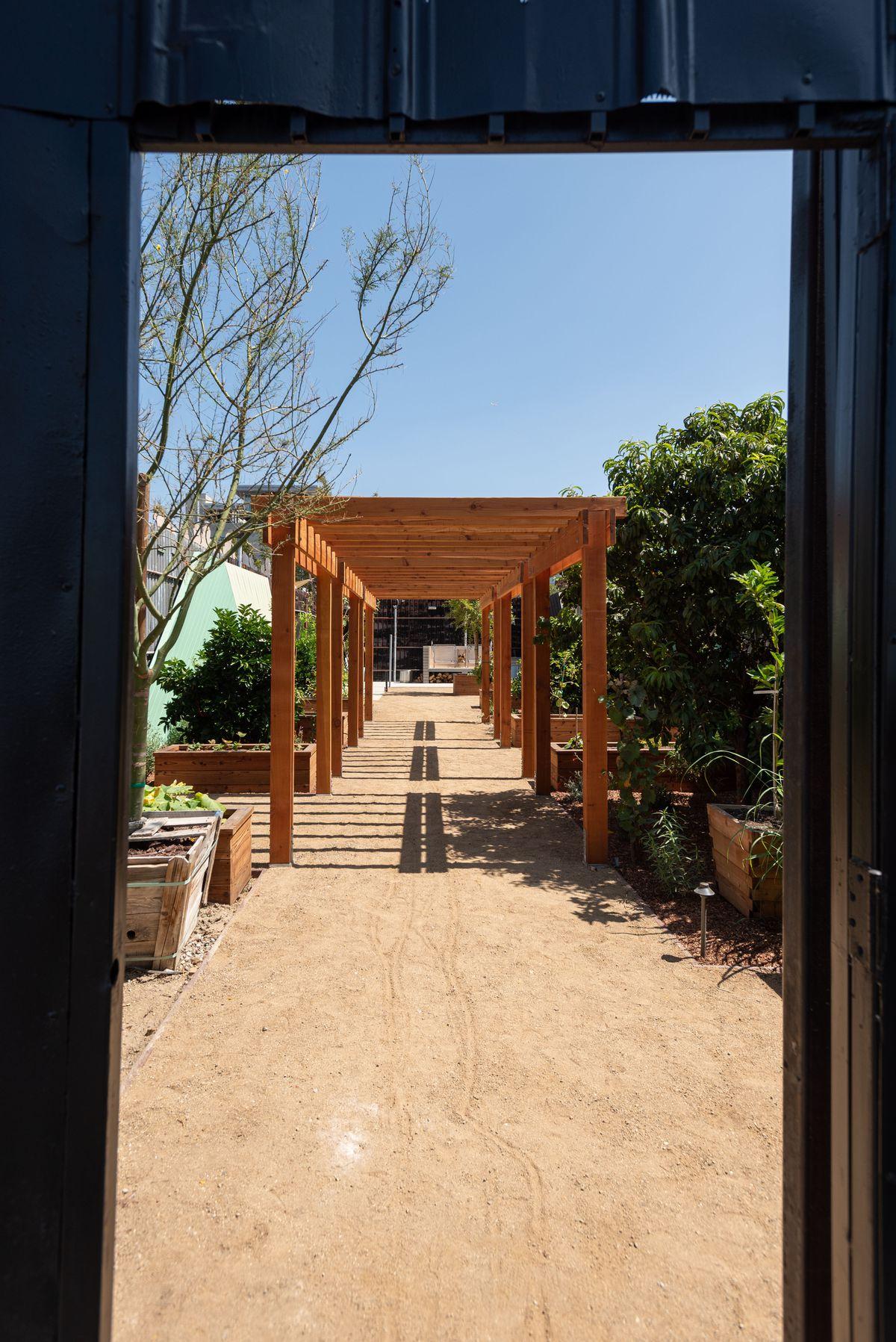 A garden in the sun is framed by a heavy black door.