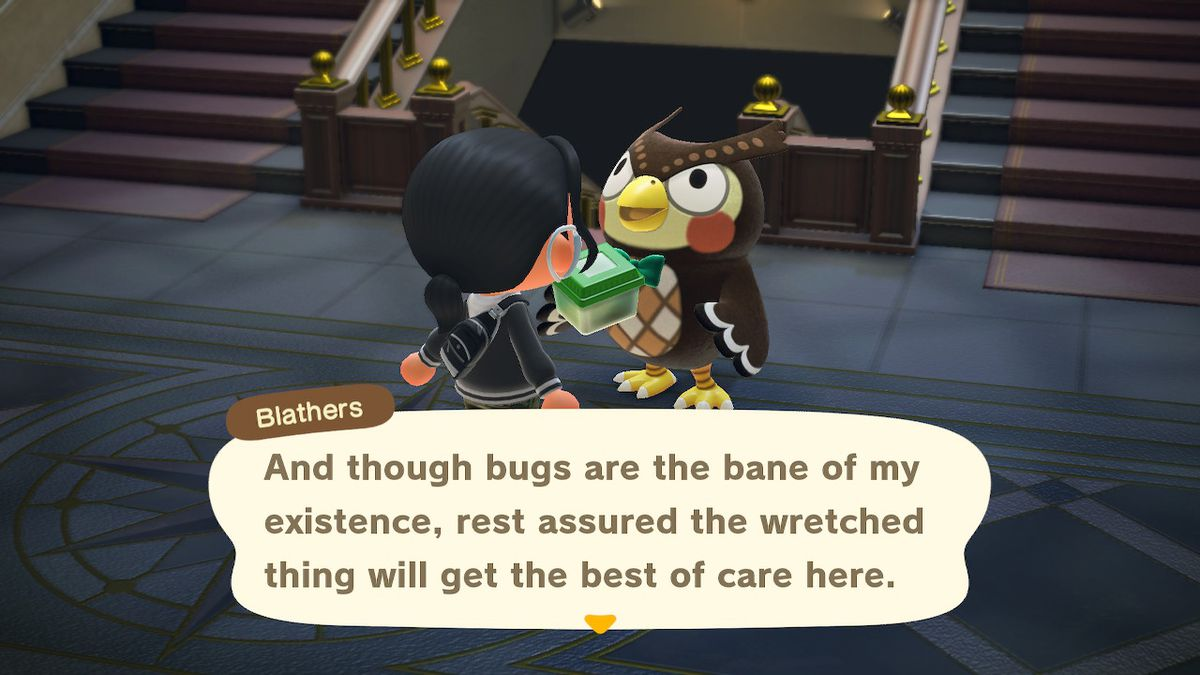Blathers talks about how disgusting bugs are while holding a caged bug