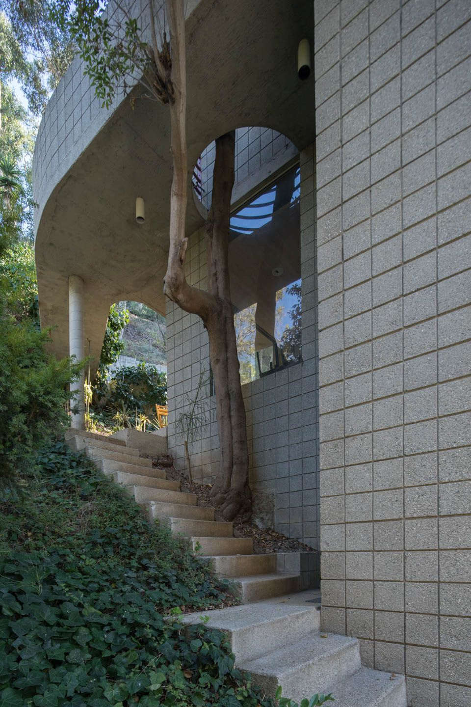 (left) A staircase passes by a tree, which has a cut-out in the upper floor so the tree can grown unbothered. (Right) The house from the front, with the stacked balconies making up the front facade.