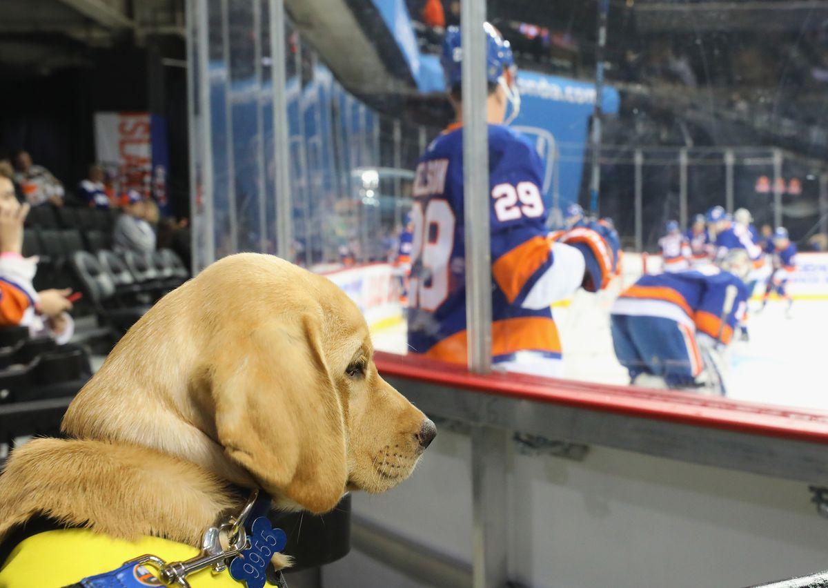 Nashville Predators v New York Islanders