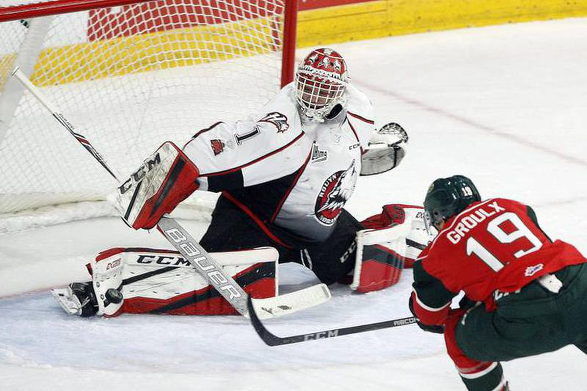 2019 Memorial Cup Preview Halifax Looks For First Championship