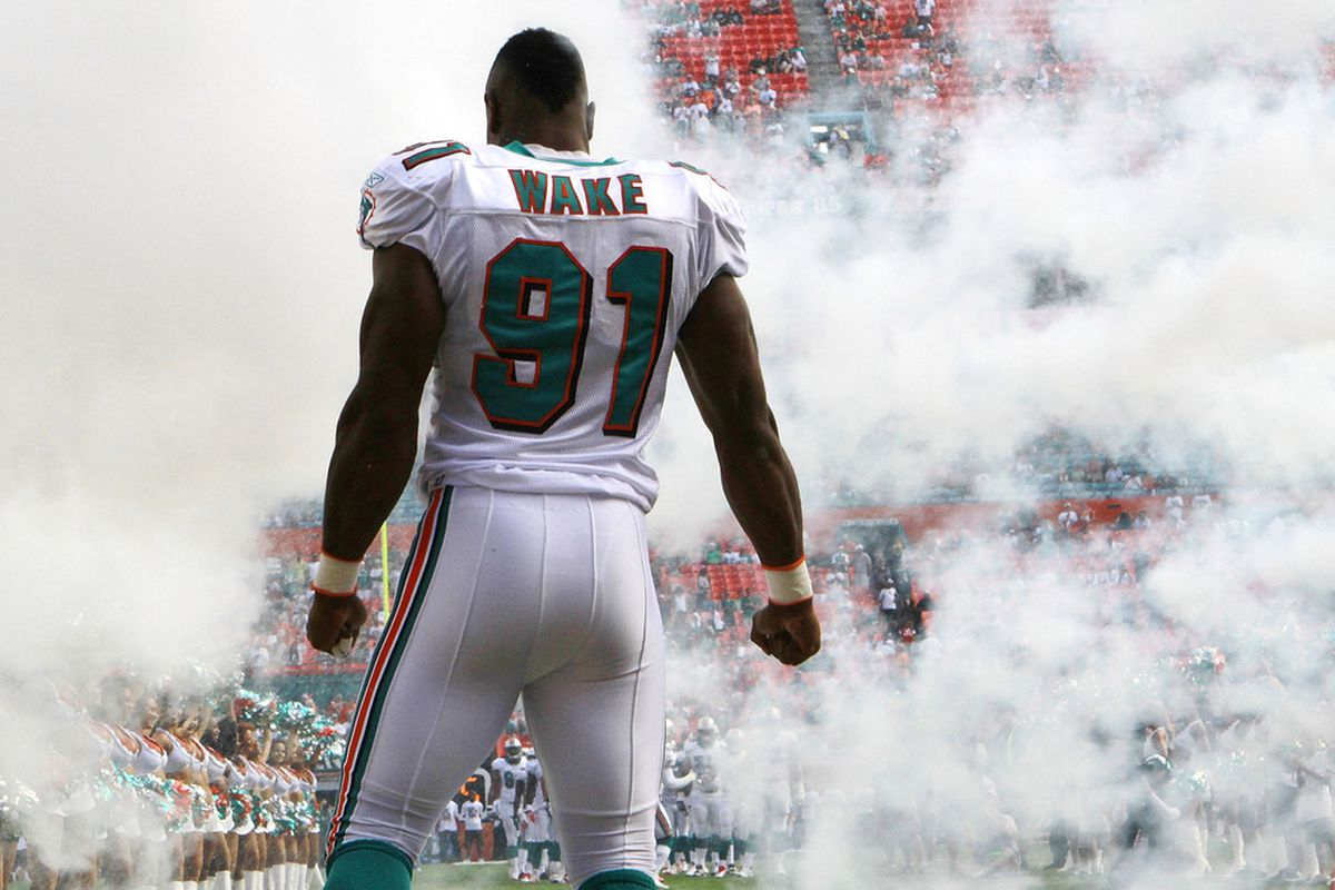 Dolphins Roster Breakdown Cameron Wake The Phinsider