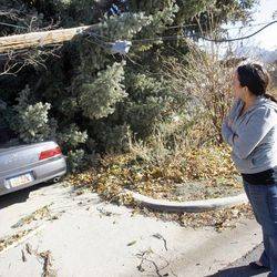 Bri Saley shows damage from a fallen pine tree to her home in Sugar House Thursday, Dec. 1, 2011, after high winds blew two large trees onto her home.
