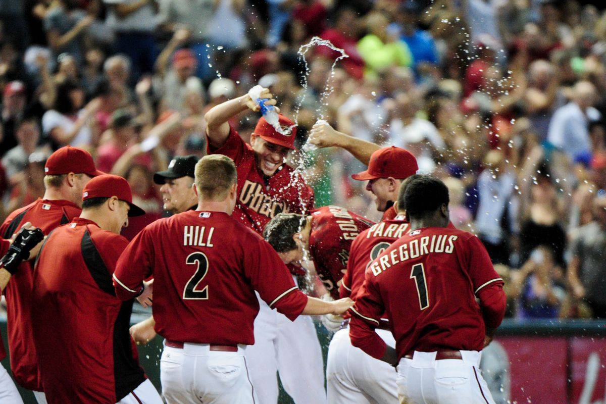 What's the deal with water bottles in the dog piles this year, anyway?