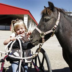Brianna Heim, 5, gets a kiss from Bella at Buffalo Ranch in Farmington on Thursday during a therapeutic riding program organized by the nonprofit group Therapeutic Assets.