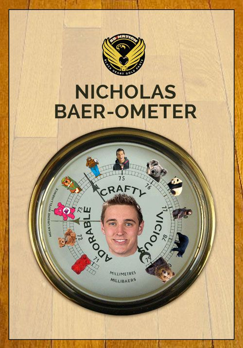 Baerometer_mild
