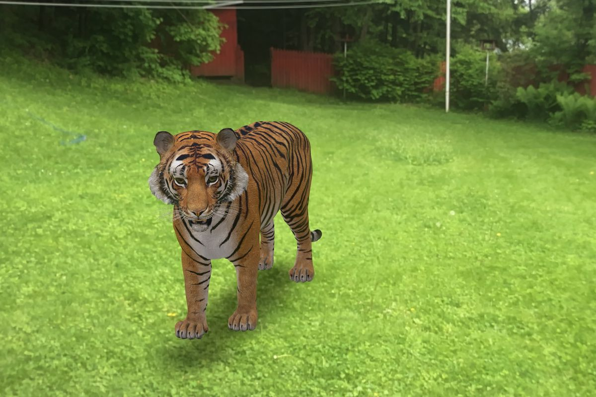 How to turn your Living room into a Virtual Zoo by using Google's3D AR Animals