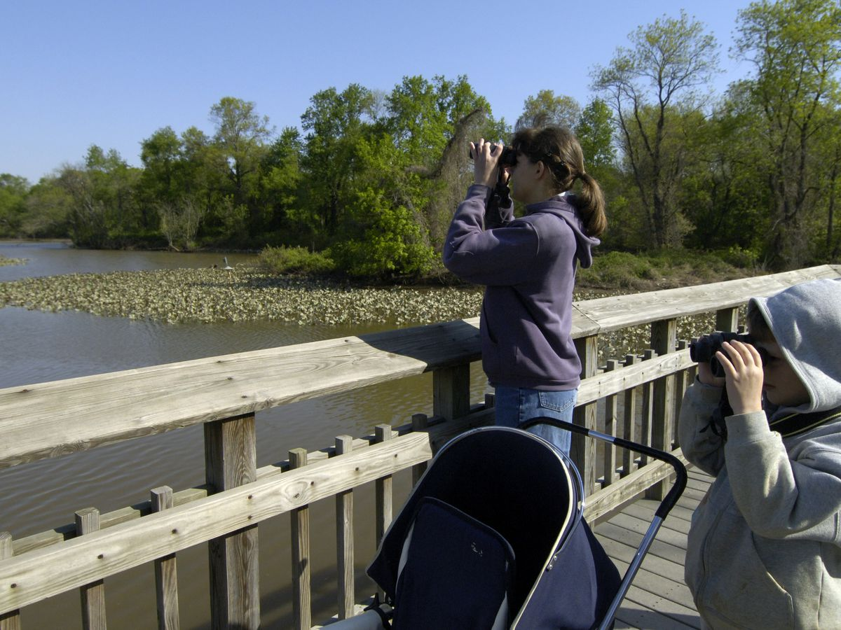 A woman and child look out over a marsh area.