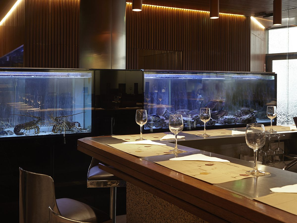 An L shaped bar set with place settings and wine glasses in front of two fish tanks full of lobsters in a sleek dining room with low lighting