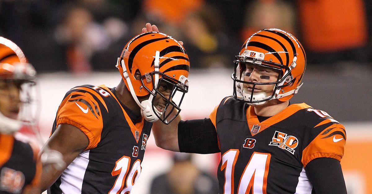 Bengals viewed as long shots to make NFL playoffs