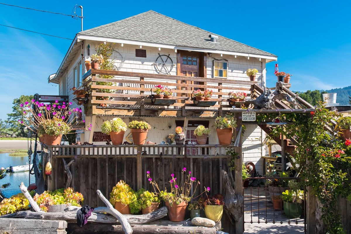 A white two-story home with horizontal wood paneling, with more than a dozen potted plants are strewn on the outdoor terrace and fence.