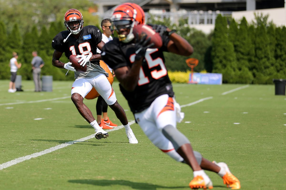 Steelers at Bengals injury report: John Ross limited