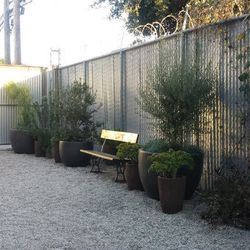 Rag & Bone's back yard hangout, which staff tells us will be outfitted with a fire pit.