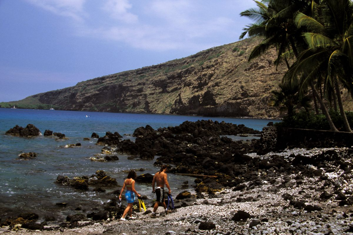 Kealakekua Bay, Snorkelers
