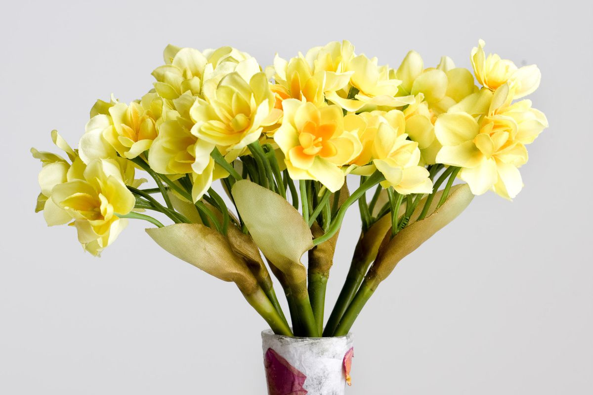 Flower vase pronunciation - People Are Judging You For The Way You Pronounce Vase