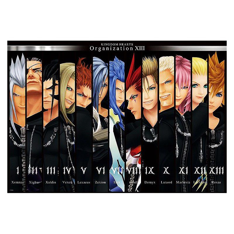 A complete lineup of Organization XIII from Kingdom Hearts.