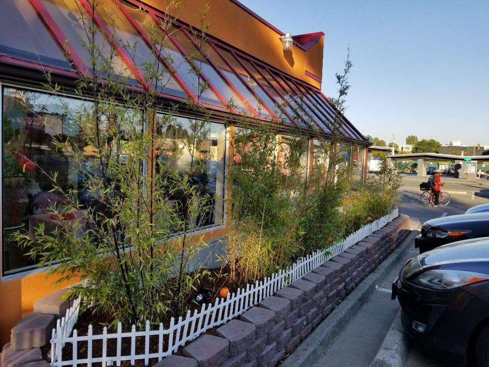 seattle lotus vegetarian restaurant yelp