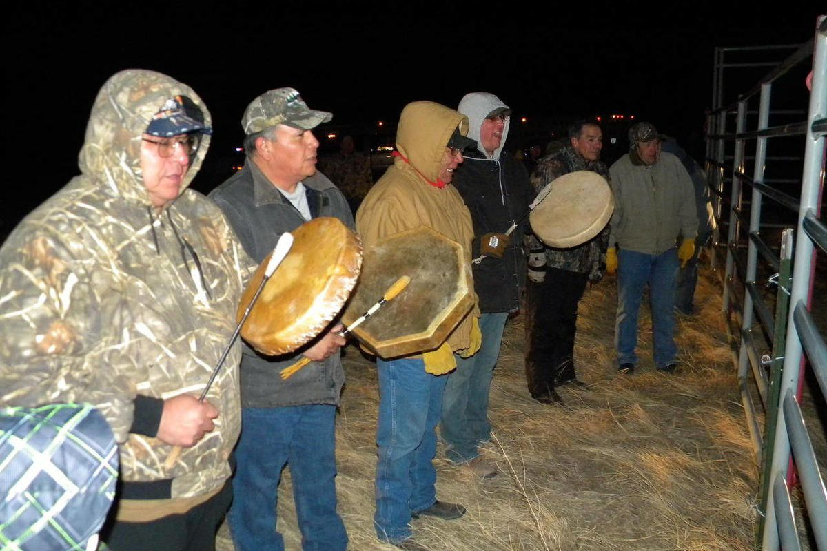 APNewsBreak: Yellowstone bison arrive at Fort Peck - Deseret