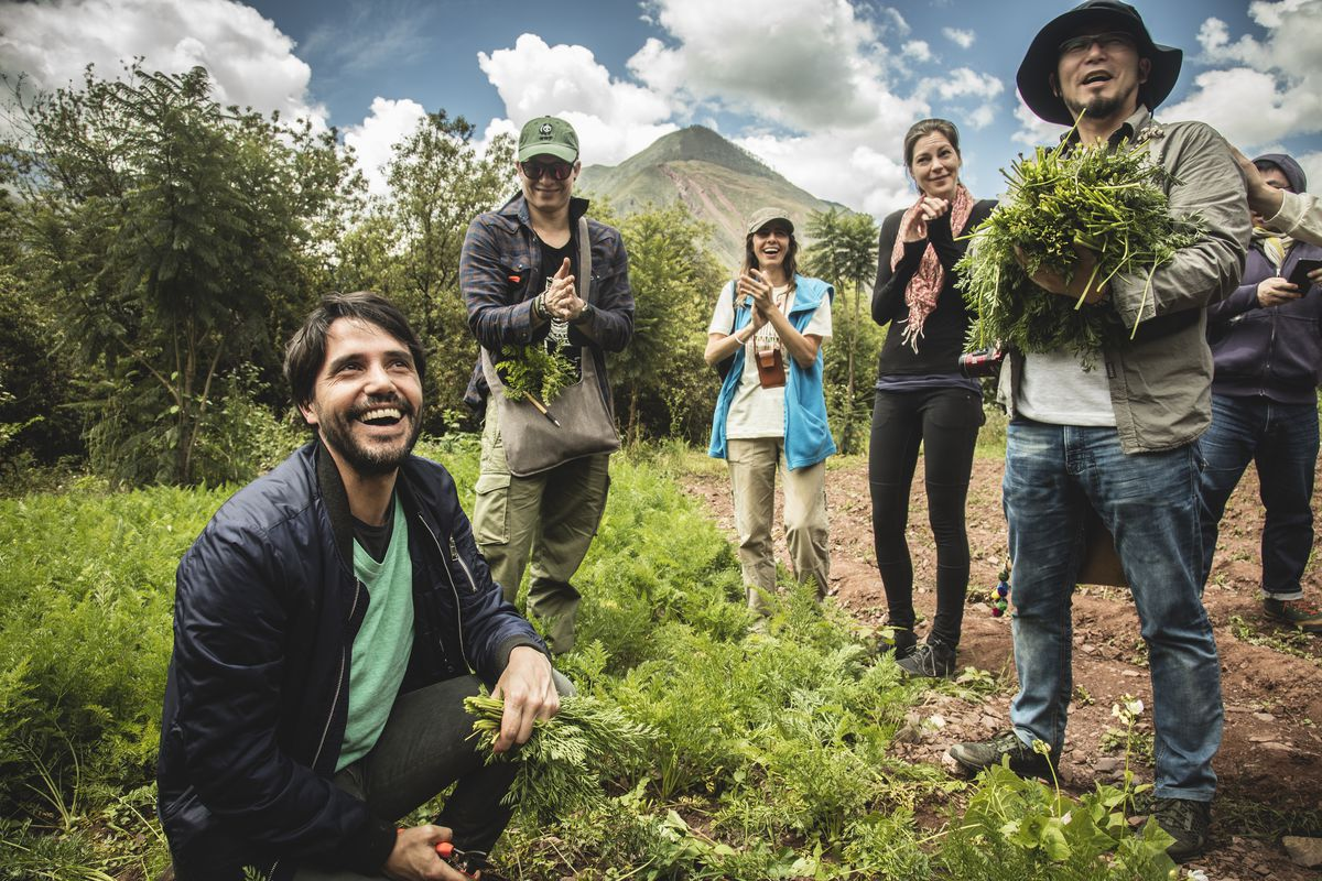 Virgilio Martínez and others gather plants in Peru