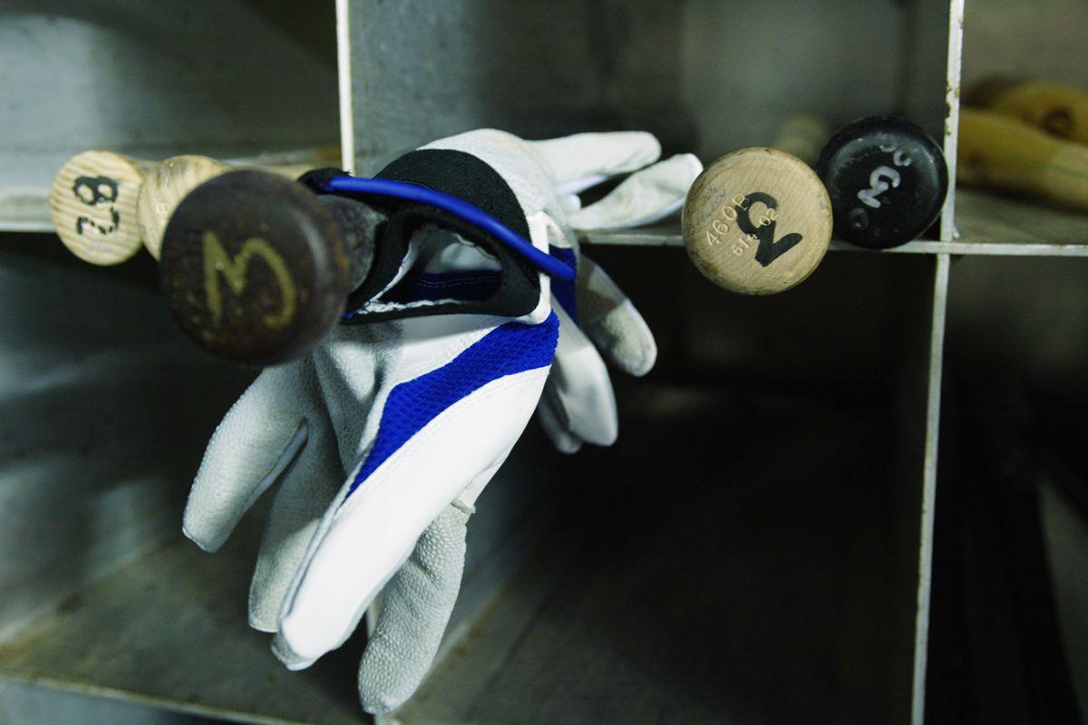 Orlando Hudson baseball bats and batting gloves